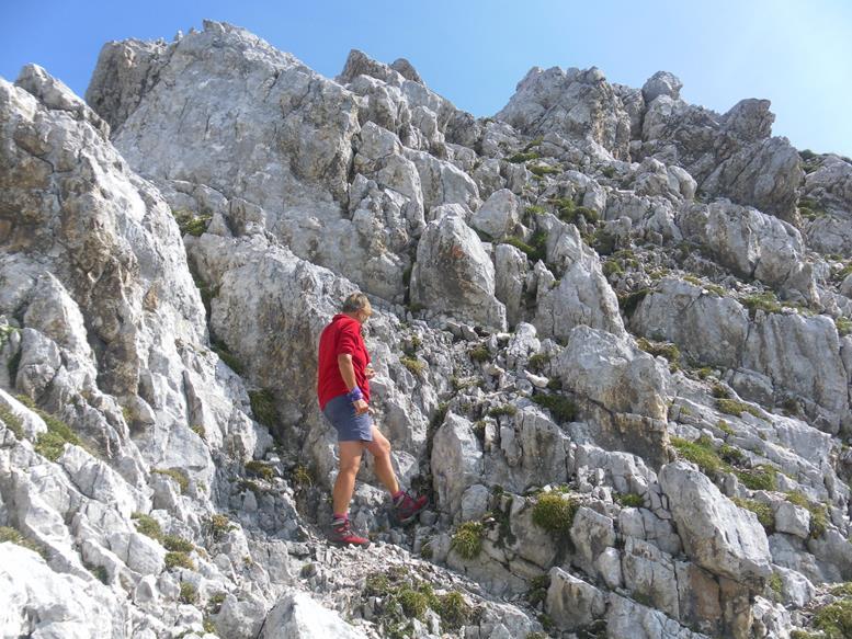 Foto: Wolfgang Lauschensky / Wander Tour / Aus dem Halltal auf die Speckkarspitze / 02.07.2017 13:56:25
