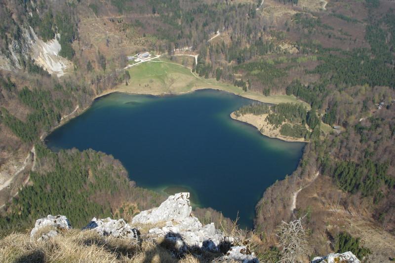 Foto: Günter Siegl / Wander Tour / Vom Franzl im Holz auf den Katzenstein / Laudachsee / 24.04.2011 17:32:54