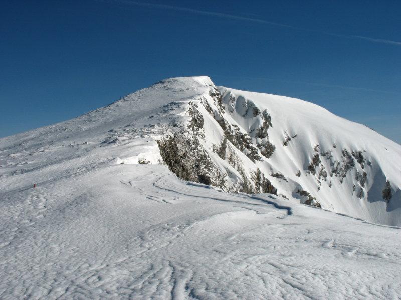 Foto: namaste / Ski Tour / Großer Ötscher, 1893m / Blick zum Gipfel / 24.02.2008 21:29:08