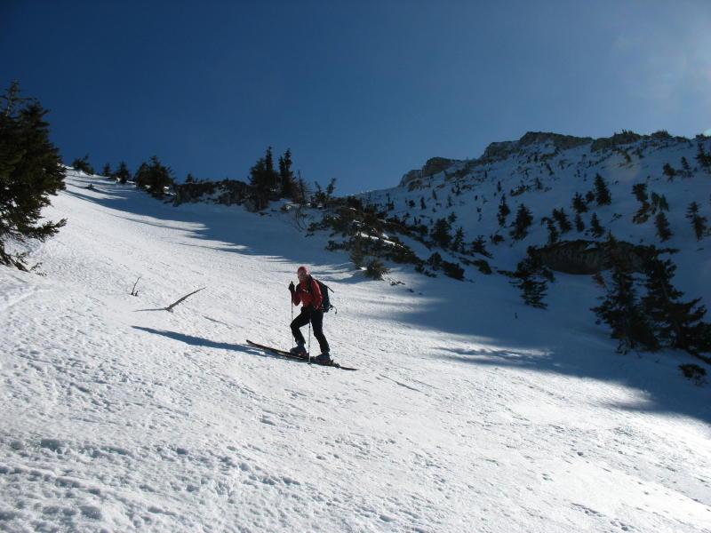 Foto: namaste / Ski Tour / Großer Ötscher, 1893m / In der Fürstenplan / 24.02.2008 21:30:28