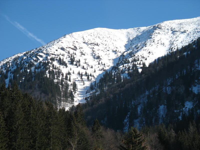 Foto: namaste / Ski Tour / Großer Ötscher, 1893m / Fürstenplan , die Abfahrt verläuft durch die Rinne in Bildmitte / 24.02.2008 21:30:39