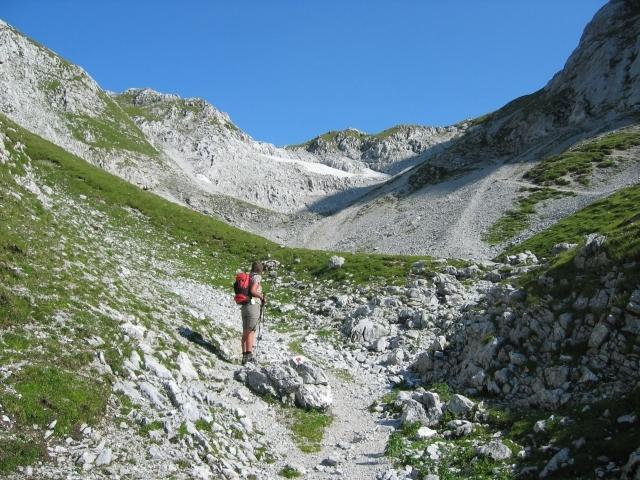 Foto: elipes / Ski Tour / Eiskogel, 2321m - über die Tauernscharte / Aufstieg zur Tauernscharte / 02.08.2009 21:12:03