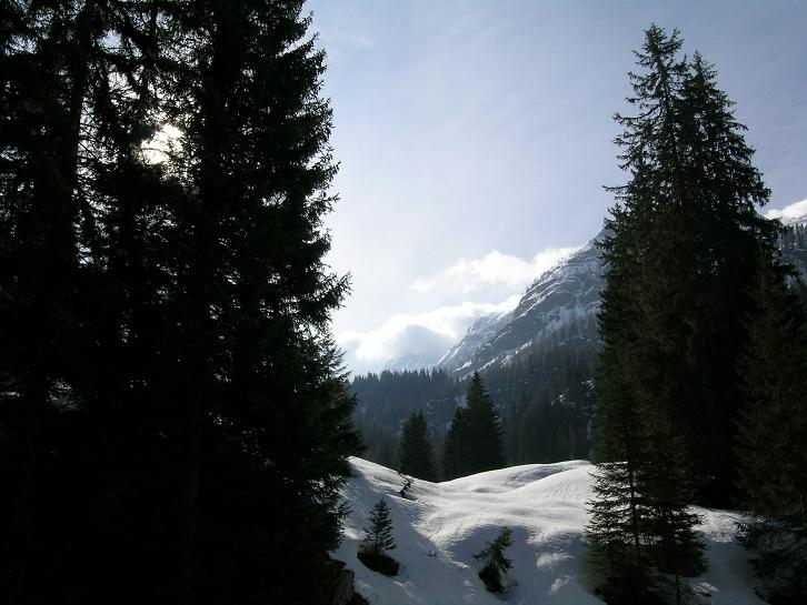 Foto: Andreas Koller / Ski Tour / Kleiner Pleißlingkeil, 2417m - über die Südwiener Hütte / 27.01.2009 22:14:57