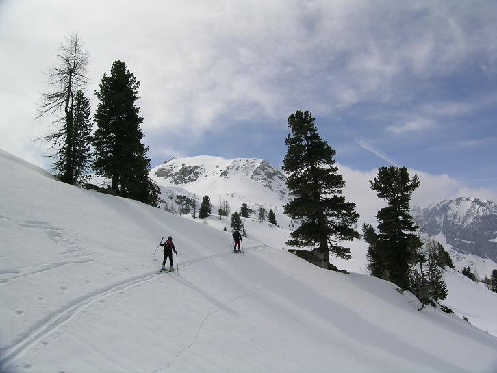 Foto: Andreas Koller / Ski Tour / Kleiner Pleißlingkeil, 2417m - über die Südwiener Hütte / 27.01.2009 22:14:19