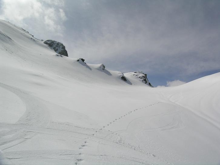 Foto: Andreas Koller / Ski Tour / Kleiner Pleißlingkeil, 2417m - über die Südwiener Hütte / 27.01.2009 22:13:31