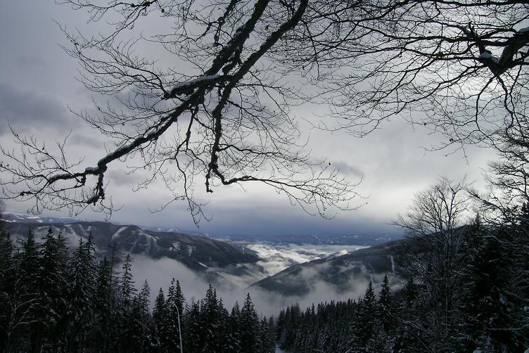 Foto: Andreas Koller / Ski Tour / Hohe Veitsch, 1981m - Südanstieg/Goassteign-Abfahrt / 16.12.2008 20:33:51