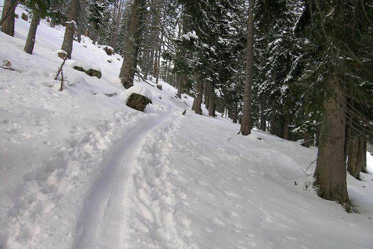 Foto: Andreas Koller / Skitour / Hohe Veitsch, 1981m - Südanstieg/Goassteign-Abfahrt / 16.12.2008 20:33:41