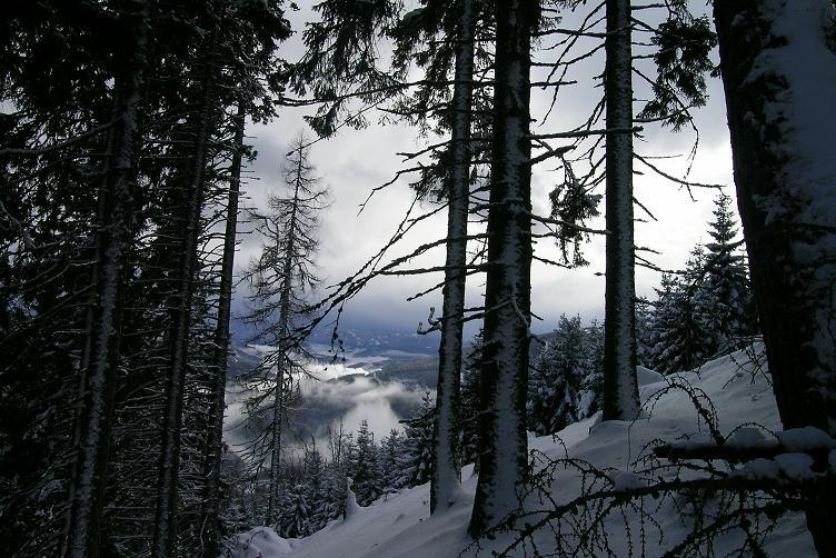 Foto: Andreas Koller / Ski Tour / Hohe Veitsch, 1981m - Südanstieg/Goassteign-Abfahrt / 16.12.2008 20:33:34