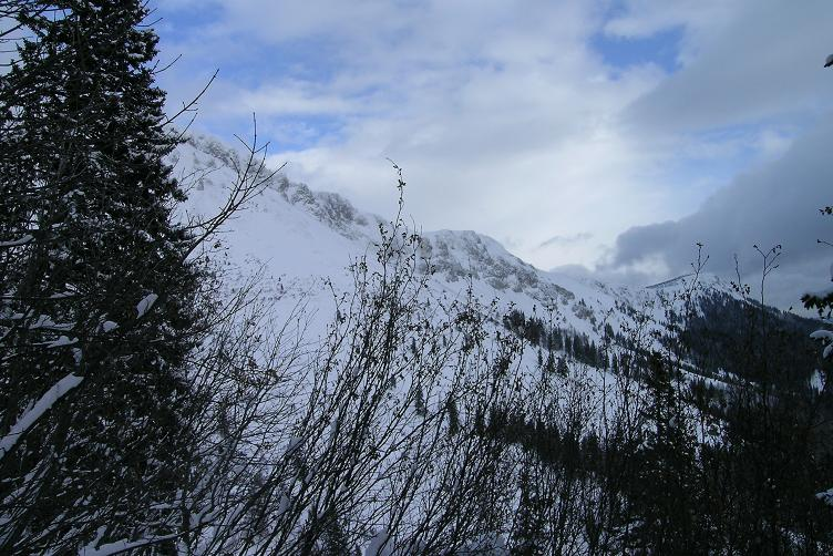 Foto: Andreas Koller / Skitour / Hohe Veitsch, 1981m - Südanstieg/Goassteign-Abfahrt / 16.12.2008 20:33:26
