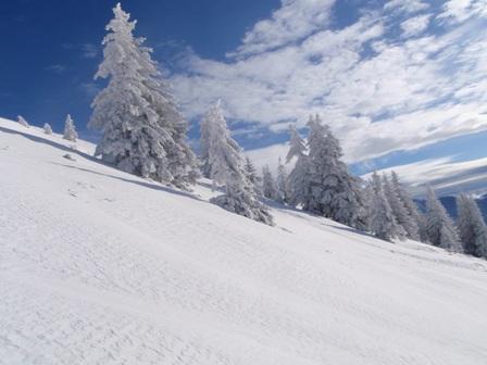Foto: Johann Seiwald / Ski Tour / Schlenken, 1649m  - vom Rengerberg / 19.12.2008 11:29:56