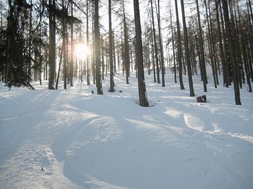 Foto: Atzi / Ski Tour / Rote Wand / Aufstieg über Variante 4 (Dümlerhütte) / 16.02.2008 21:25:43