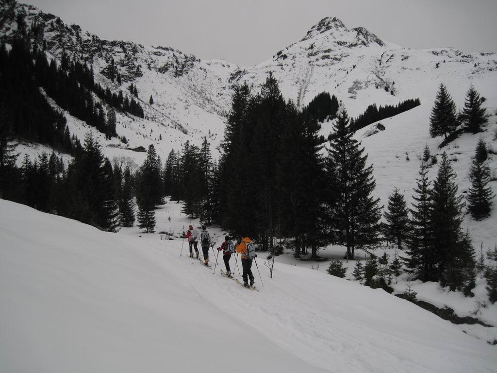 Foto: Heidi Schützinger / Ski Tour / Saalkogel, 2006m / Aufstieg über die Saalalm zum Saaljoch und auf den Saalkogel  / 08.01.2011 18:29:03