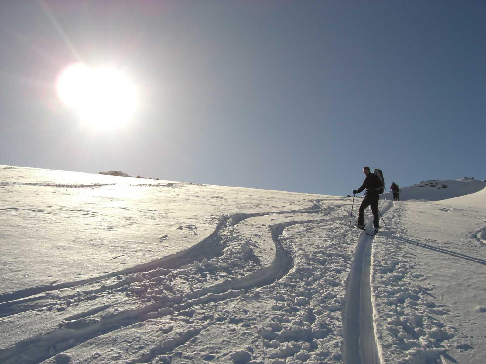 Foto: Thomas Paschinger / Skitour / Zwieselsbacher Roßkogel, 3081m / am Gletscher westlich der Rotgrubespitze / 07.02.2009 13:36:46