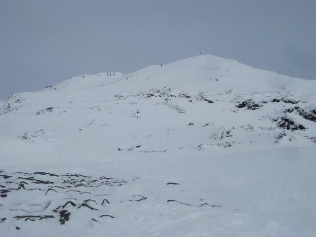 Foto: Wolfgang Lauschensky / Ski Tour / Hochgasser, 2922m / Gipfelstock des Hochgassers / 10.03.2013 17:13:35