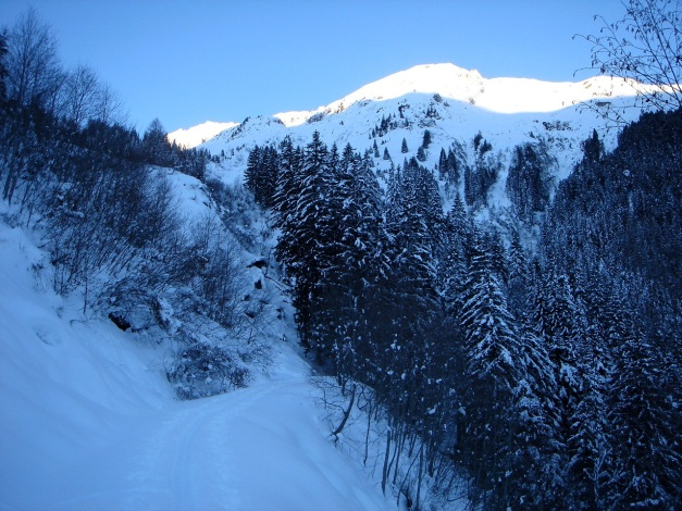 Foto: Manfred Karl / Ski Tour / Zwingscharte, 2760m - bzw. Hoher Tenn - Schneespitze, 3317m / 21.12.2008 16:37:09