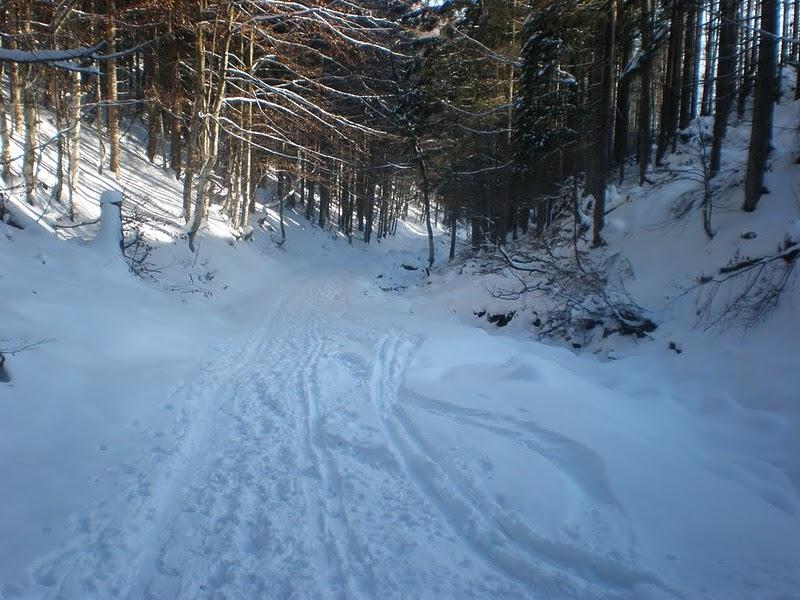 Foto: MEG1 / Ski Tour / Kasberg, 1747m / 25.11.2010 13:32:27