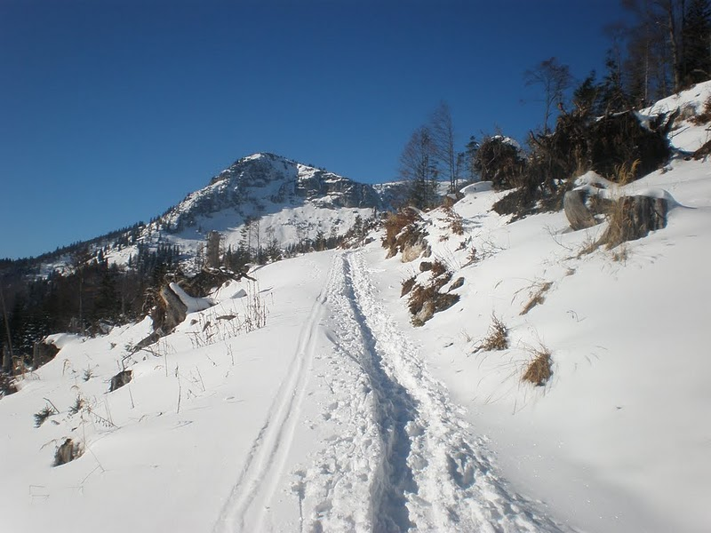 Foto: MEG1 / Ski Tour / Kasberg, 1747m / 25.11.2010 13:32:34