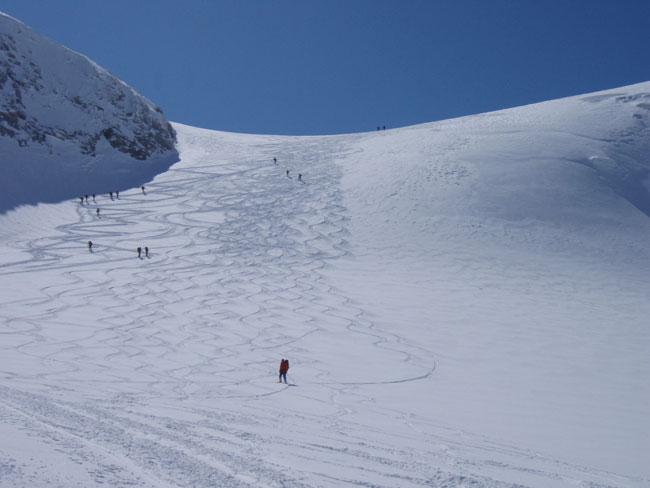 Foto: Grasberger Gerhard / Ski Tour / Großvenediger, 3666m - von Norden / Venedigerscharte. / 04.05.2009 14:22:33