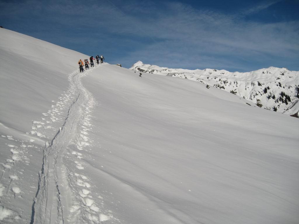 Foto: Heidi Schützinger / Ski Tour / Sonnspitze, 2062m - von Süden / Wunderschönes weites Schigelände / 04.01.2011 17:27:27