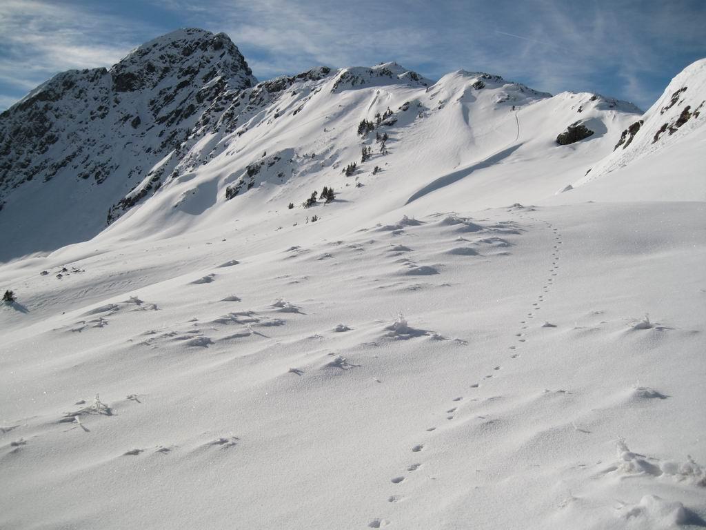 Foto: Heidi Schützinger / Ski Tour / Sonnspitze, 2062m - von Süden / Blick auf den Staffkogel / 04.01.2011 17:28:07