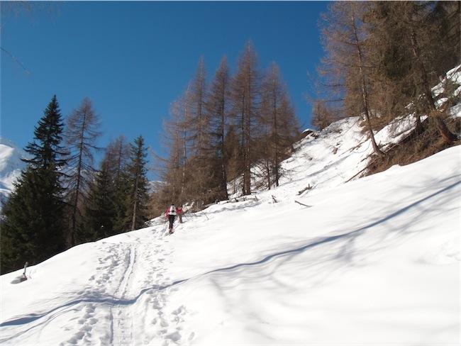 Foto: ksc / Ski Tour / Pürgelskunke, 2500m / 24.02.2011 19:26:43