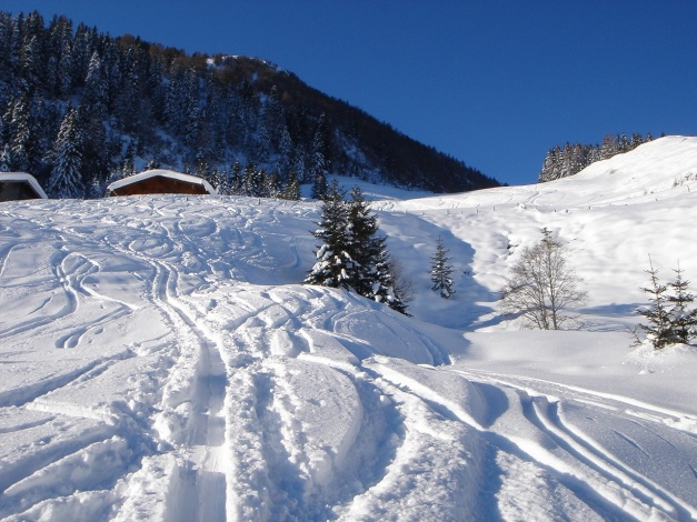 Foto: Manfred Karl / Ski Tour / Imbachhorn, 2470m / 21.12.2008 16:52:06