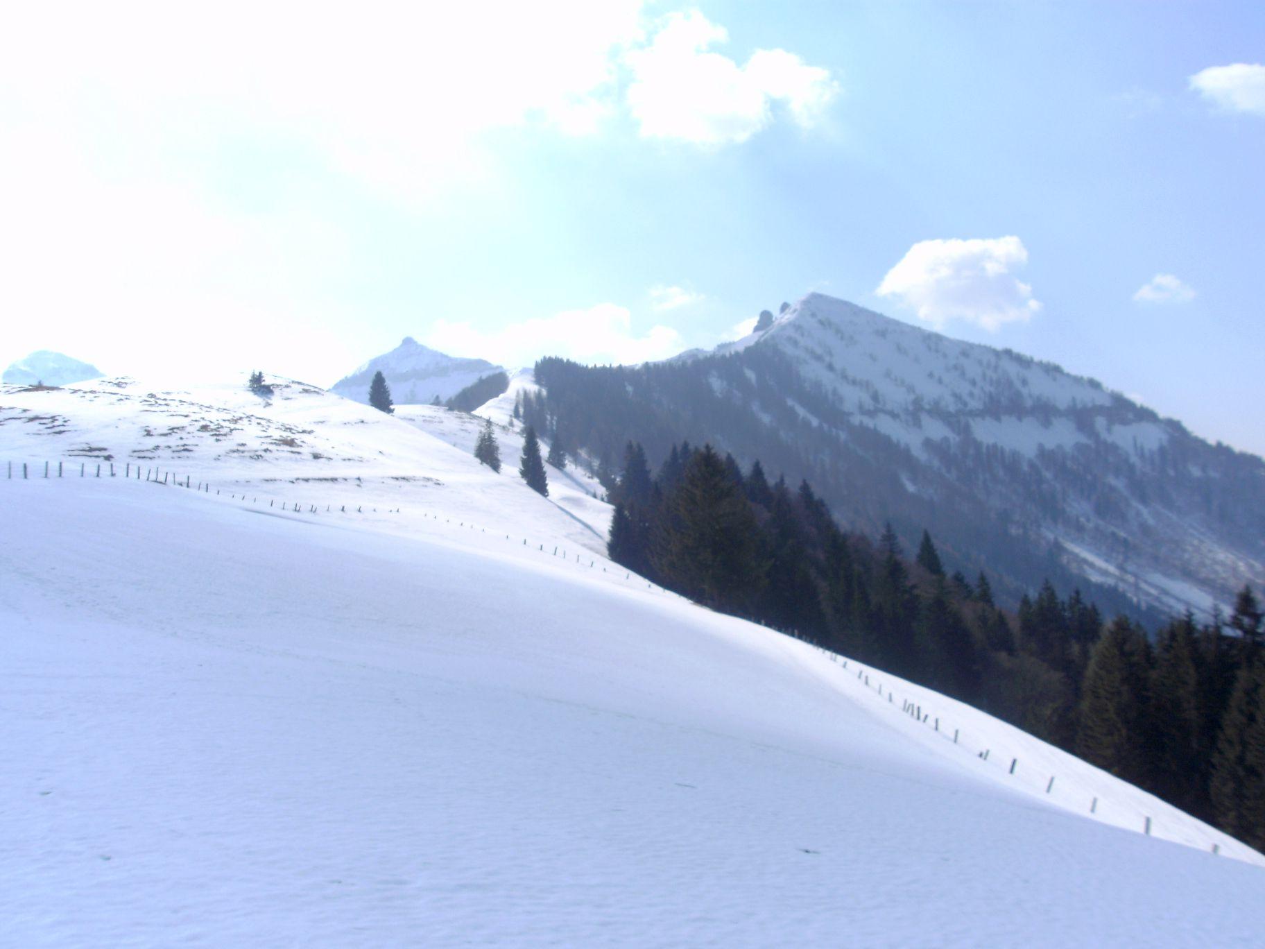 Foto: daberti / Ski Tour / Regenspitz, 1675m - über Feichtensteinalm / Blick von der Feichtensteinalm auf den Regenspitz / 20.03.2015 08:57:25