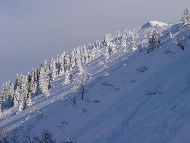 Foto: Manfred Karl / Ski Tour / Königsberghorn, 1621m / Der Gipfelhang ist nicht immer lawinensicher! / 19.12.2008 17:33:32