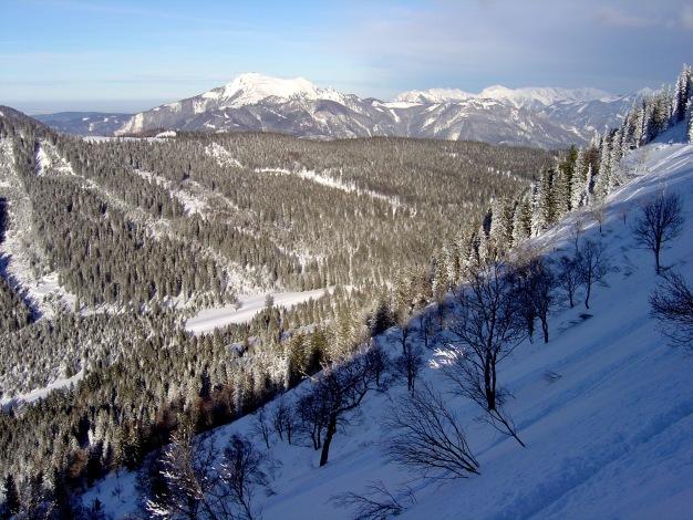 Foto: Manfred Karl / Ski Tour / Königsberghorn, 1621m / 19.12.2008 17:33:06