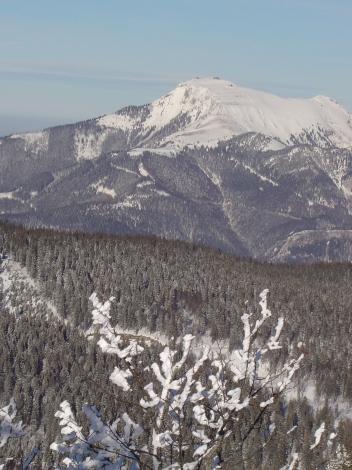 Foto: Manfred Karl / Ski Tour / Königsberghorn, 1621m / Schafberg / 19.12.2008 17:32:29