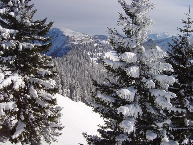 Foto: Manfred Karl / Ski Tour / Königsberghorn, 1621m / 19.12.2008 17:31:32