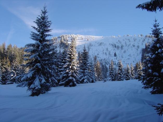 Foto: Manfred Karl / Ski Tour / Königsberghorn, 1621m / Flacher Auslauf des Gipfelhanges / 19.12.2008 17:28:45