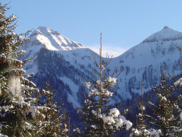 Foto: Manfred Karl / Ski Tour / Königsberghorn, 1621m / Genner und Gruberhorn / 19.12.2008 17:27:57