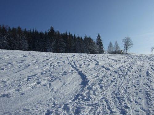 Foto: hofchri / Skitour / Schlenken (über Jägernase) / 08.01.2009 20:25:39