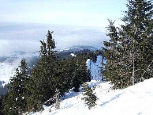 Foto: hofchri / Skitour / Schlenken (über Jägernase) / Am Grat zum Gipfel / 08.01.2009 20:26:27