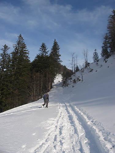 Foto: Lenswork.at / Ch. Streili / Ski Tour / Loibersbacher Höhe, 1456m / 21.11.2007 19:51:21