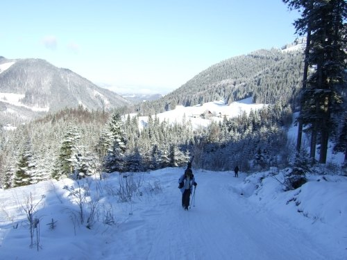 Foto: hofchri / Ski Tour / Loibersbacher Höhe, 1456m / 03.01.2009 19:57:26