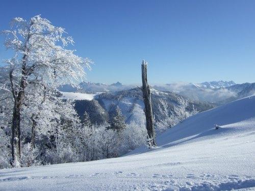 Foto: hofchri / Ski Tour / Loibersbacher Höhe, 1456m / 03.01.2009 20:00:21