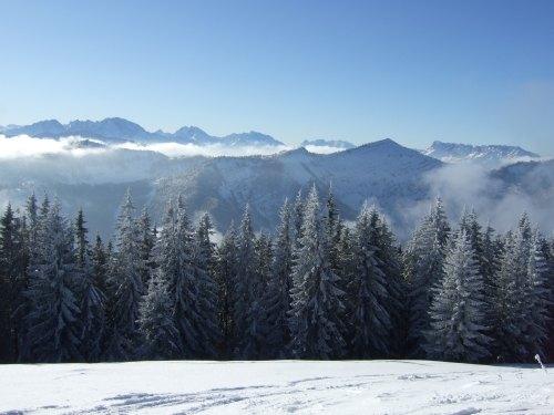Foto: hofchri / Ski Tour / Loibersbacher Höhe, 1456m / 03.01.2009 20:06:41
