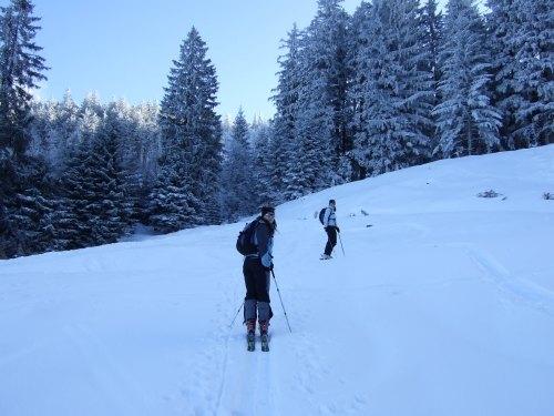 Foto: hofchri / Ski Tour / Loibersbacher Höhe, 1456m / 03.01.2009 19:57:36