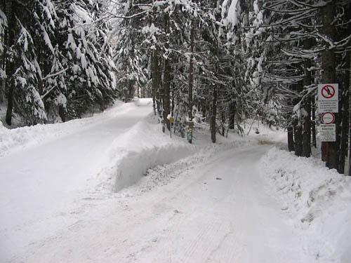 Foto: Lenswork.at / Ch. Streili / Ski Tour / Loibersbacher Höhe, 1456m / Bei der Abzweigung rechts gehen. / 19.11.2007 10:43:19
