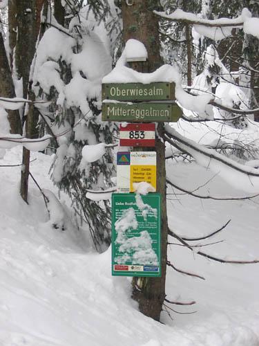 Foto: Lenswork.at / Ch. Streili / Ski Tour / Loibersbacher Höhe, 1456m / 19.11.2007 10:42:51