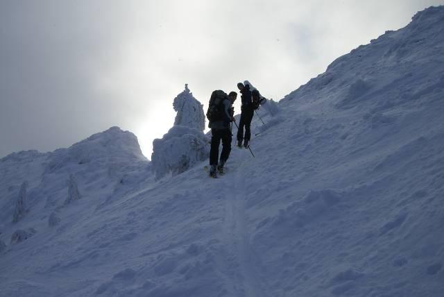 Foto: vbuebi2 / Ski Tour / Stubwieswipfel, 1786m / 29.12.2008 16:33:23