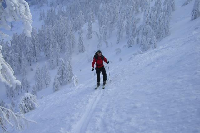 Foto: vbuebi2 / Ski Tour / Stubwieswipfel, 1786m / 29.12.2008 16:33:41