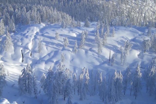 Foto: vbuebi2 / Ski Tour / Stubwieswipfel, 1786m / Traumfoto vom Gipfel aus / 29.12.2008 16:38:18