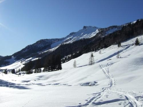 Foto: hofchri / Ski Tour / Hochwieskopf, 1754m / 12.01.2009 12:34:37