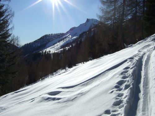 Foto: hofchri / Ski Tour / Hochwieskopf, 1754m / 12.01.2009 12:34:47
