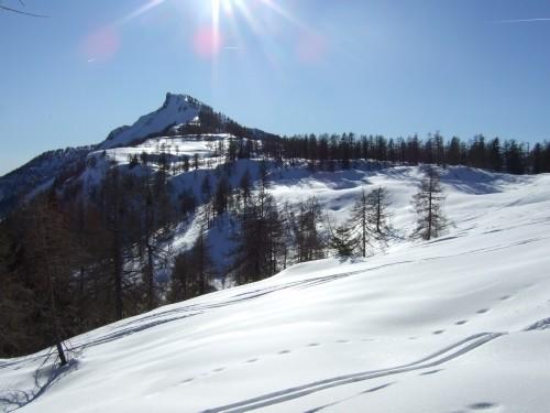 Foto: hofchri / Ski Tour / Hochwieskopf, 1754m / 12.01.2009 12:34:58