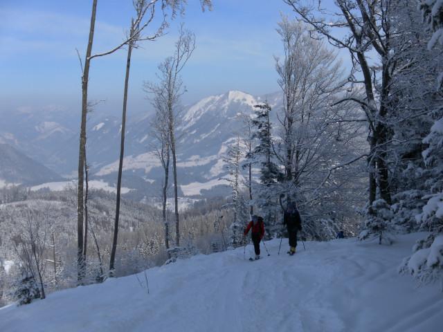 Foto: Wolfgang Lauschensky / Skitour / Wilde, 1719m -  über Wartegg / Waldweg über Vorderstoder / 14.02.2012 22:09:52