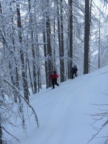 Foto: Wolfgang Lauschensky / Skitour / Wilde, 1719m -  über Wartegg / Steilwald / 14.02.2012 22:09:37